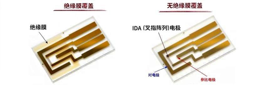 IDA(叉指阵列)电极 Au 2 um