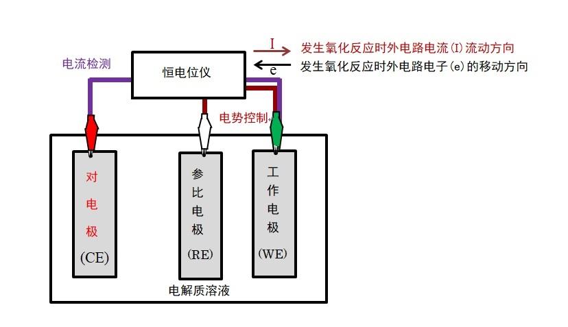 图2-1  恒电位仪和三电极体系连接示意图