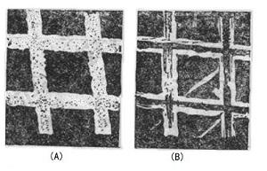 图3-2 500-lpi 金网栅的扫描电镜照片x 1000倍