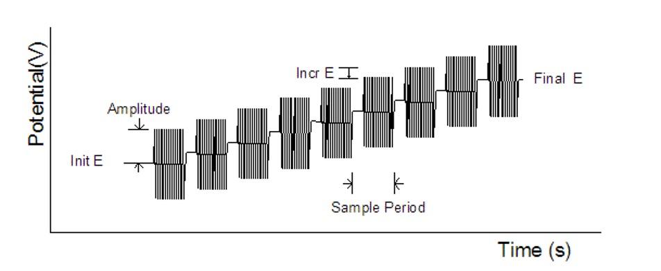 图 10-2 SHACV 电位波形