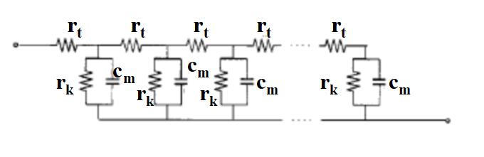 图19-1 TiO2阳极传输线模型图