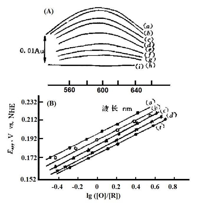 图4-7 A为星状花青苷在不同外加电位下的薄层光谱。B为不同温度下的Nernst图。